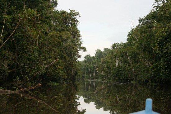 Bangkatan Homestay: Deeper down river