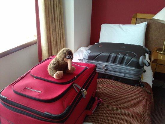Sligo Park Hotel & Leisure Club : Piwi the Kiwi checking out the room