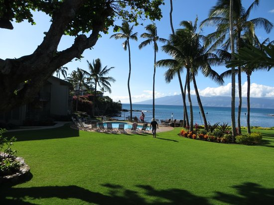 Honokeana Cove Condominiums : View of the well maintained grounds/pool area