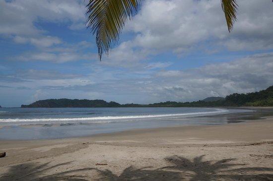 La Tropicale Beach Lodge: La Playa Carillo