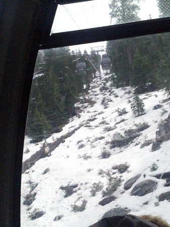 Marriott's Timber Lodge: view of the snow from the Gondola, Lake Tahoe