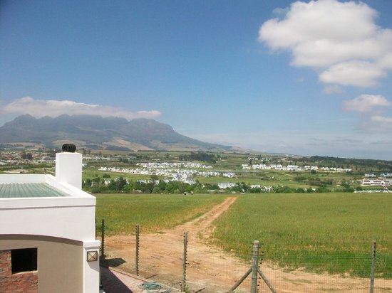 Protea Hotel by Marriott Stellenbosch : View from the patio