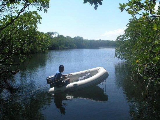 Apo Reef Club: Lagune auf Apo Iland