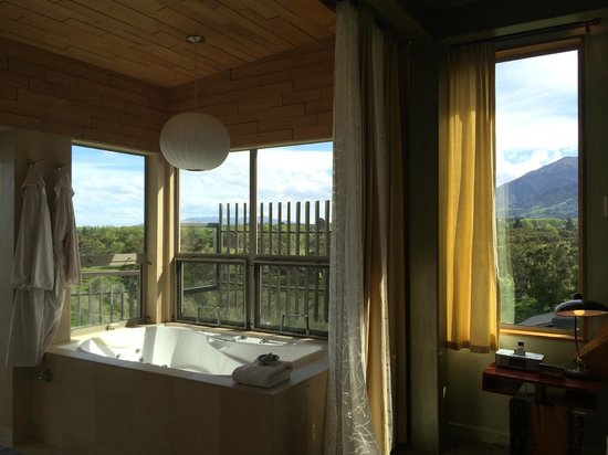 Hapuku Lodge: Bathroom overlooking Olive Grove