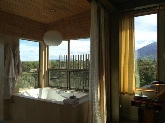 Hapuku Lodge: Bathroom overlooking Olive Grove