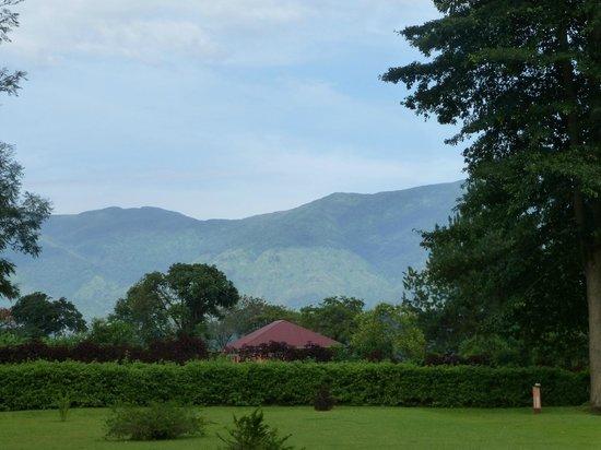 Kluges Guest Farm: Blick durch den Garten auf die Gipfel des Ruwenzori Gebirges