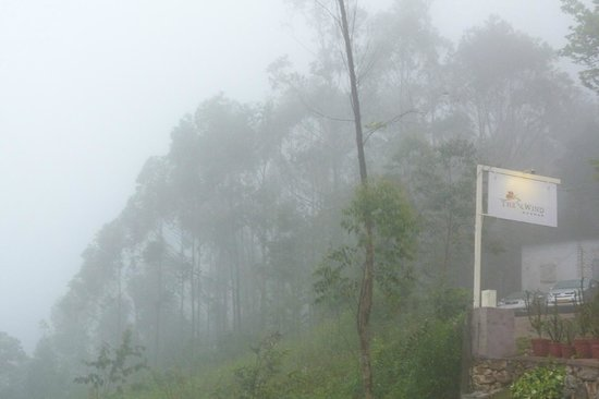 The Wind Munnar: Morning Mist