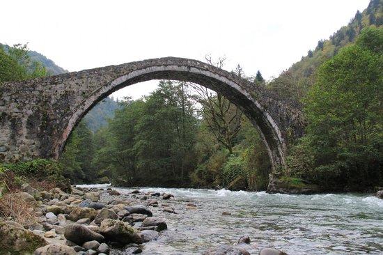 Çamlıhemşin, Türkiye: Şenyuva daki taş köprü