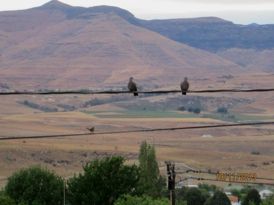 Clarens Eddies: View of the mountains