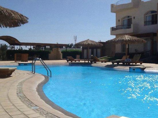 Sheikh Ali Dahab Resort: pool beats the beach!