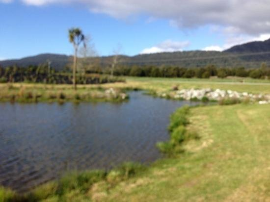 Franz Josef Oasis: Lake in the grounds
