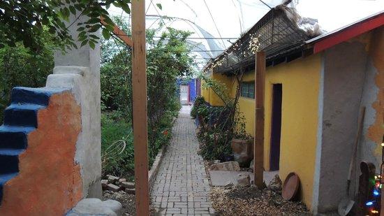 Eve's Garden Bed & Breakfast: courtyard with garden