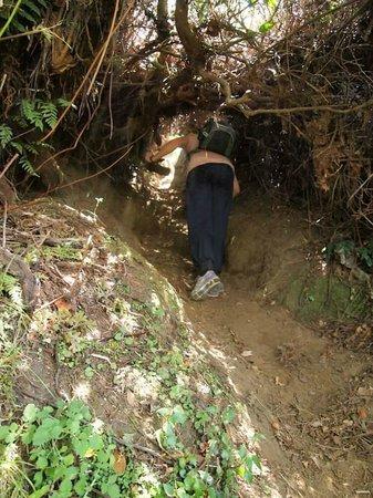 Bali Mountain Retreat: Steep ascend