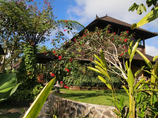 Bali Mountain Retreat : Nice relaxing place to stay