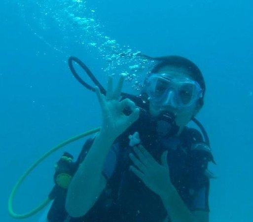 Octopus Diving Center : Tout est parfait !