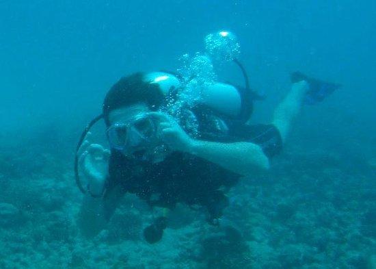 Octopus Diving Center : ok !