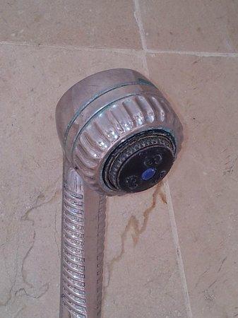 Mount Zion Hotel : Mold shower head