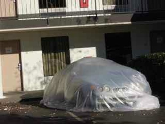 Baymont Inn & Suites Murfreesboro: Cars covered with plastic.