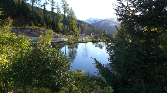 Übergossene Alm Resort : Teich