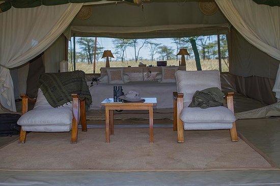 Kicheche Bush Camp: The Amazing Tumbili