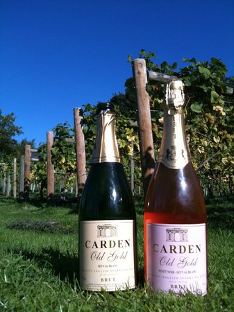 Carden Park Hotel: Carden Old Gold sparkling wine produced from onsite vineyard