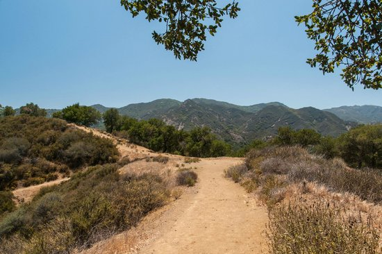 Santa Monica Mountains: Trail in the Santa Monica Mtns
