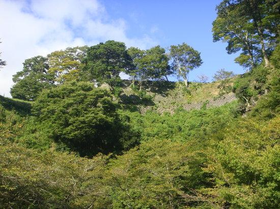 Ruins of Oka Castle: 城壁
