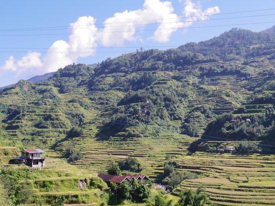 Banaue Homestay: ベランダからの景色