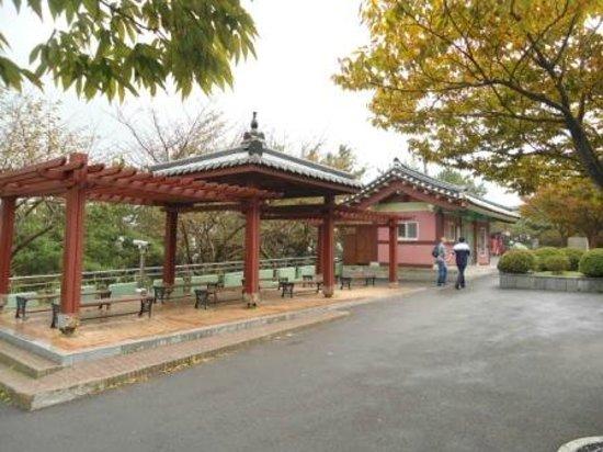 Haeundae Dalmaji-gil Road: A beautiful shelter on the Dalmaji road