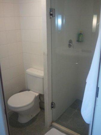 Ibis Goiania : Banheiro