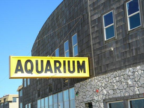 Seaside Aquarium: Outside the aquarium