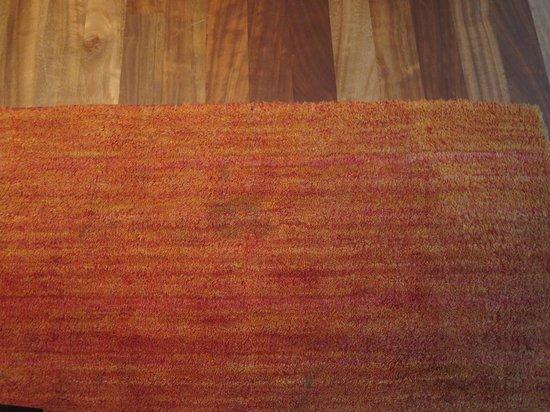 Suite Hotel Kahlenberg: Schmutziger Teppich