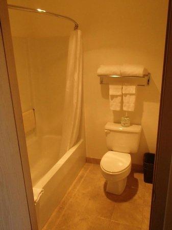 Georgetown Inn : WC et douche