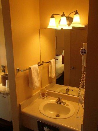 Georgetown Inn : Le lavabo