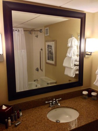 Houston Marriott West Loop by The Galleria: Adequate bathroom