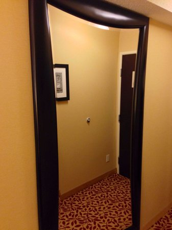 Houston Marriott West Loop by The Galleria: Large full length mirror