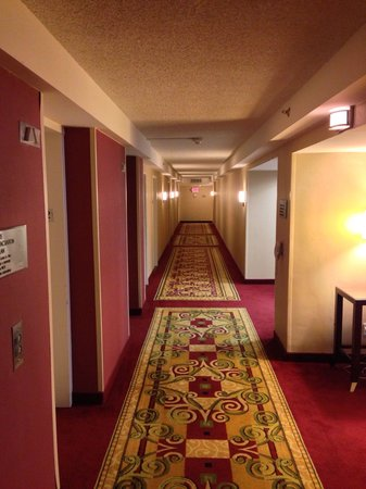 Houston Marriott West Loop by The Galleria: Manageable hallway