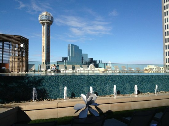 Omni Dallas Hotel: View from Pool