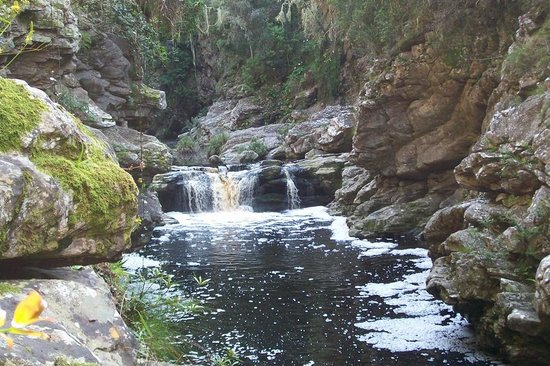 Forest Edge Nature-lovers' Retreat: Waterfall