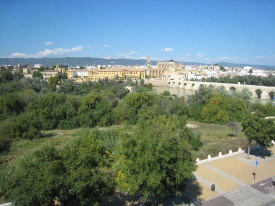 Hesperia Córdoba: vue sur l'Alcazar depuis  la terrasse de l'hôtel