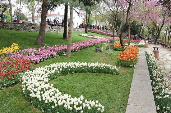 Emirgan Park: Эмирган парк в апреле! Красотища! :-)