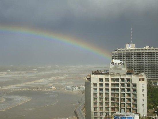 Herods Tel Aviv : Вид из отеля