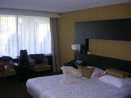 Van der Valk Hotel Goes : Kamer