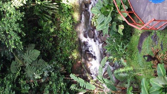 Agua Inn: Beautiful creek is better than a sleeping pill!