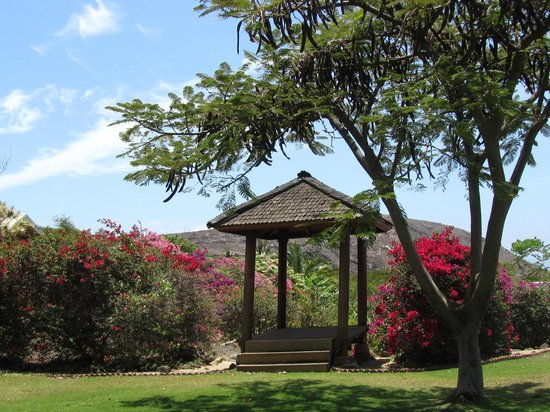 Ho'oilo House: Lovely Grounds