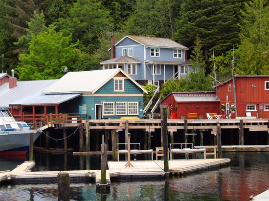Telegraph Cove Resort : Wastell is the the blue house above the rest