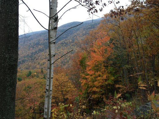 Kaaterskill Falls: Autumn in NY