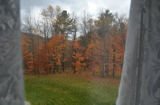 Maple Leaf Inn : View from Sweet Dreams Bedroom