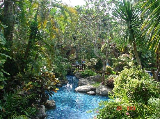 Parigata Villas Resort : Территория отеля