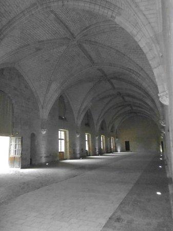 Abbaye Royale de Fontevraud: Fontevraud  cloisters